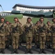 QBZ191步枪面世一年,怎么没见部队规模化实装?