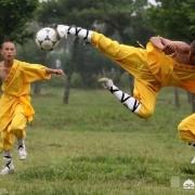河南的少林足球训练基地为什么没能为国足培养出队员?