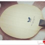 蝴蝶乒乓球底板中有哪些适合直板横打的底板?