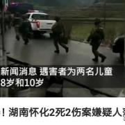 如何看待平邑县除夕夜恶性行凶杀人事件?