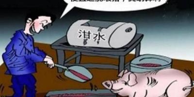 2年前开始我国禁止用潲水喂猪,谁知道为什么?