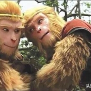 六耳猕猴明知自己是假的,为什么敢去见如来?