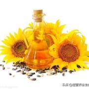 为什么有些人不提倡吃葵花籽油?