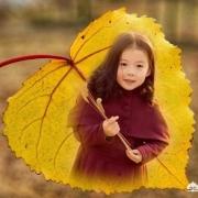 用手机修图软件Snapseed,如何把一张照片放到一片树叶中?