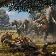 6500万年前恐龙灭绝,人类文明史也只有几千年,那中间的空白期都经历了什么?