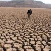 农村土地流转一亩地每年1000元,农村土地是否进入升值期?