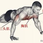 俯卧撑坚持每天1百多个,几个月了,现在感觉手臂粗了不少,腹肌没有明显效果怎么办?