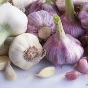 常吃大蒜究竟是伤肝还是养肝?