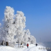 在零下40℃的环境下不停的搅拌一盆水,水会结冰吗?