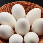 孕期吃鹅蛋有什么好处?