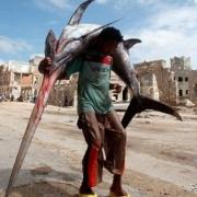 非洲海鲜多到泛滥,为什么当地人死活不愿意吃?