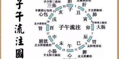 中医书籍琳琅满目,该怎么学?