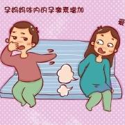 孕期放屁很臭,而且老放屁是什么情况?
