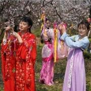 为什么南方汉族的比例,比北方汉族的比例还高?