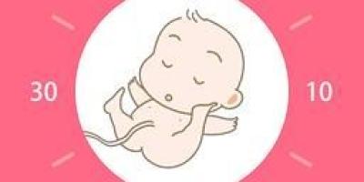 38周以后胎儿能长多少?