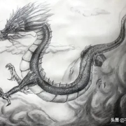 """儒家有句话叫做""""死生有命,富贵在天"""",你认为是这样吗?为什么"""