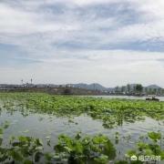 除了西湖,杭州还有哪些地方值得一去?