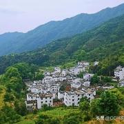 中国发展农村农业面临什么?