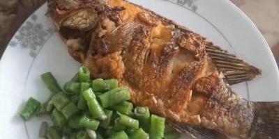 不吃晚饭,体重会减得更快吗?